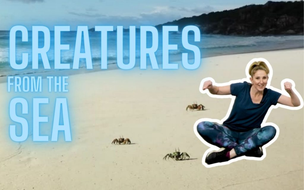 Ocean Animals & Sea Creatures Movement Activity for Kids & Toddlers